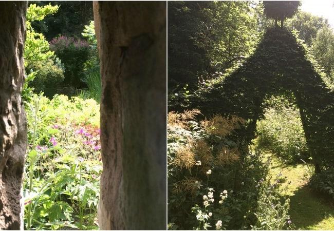garden-views